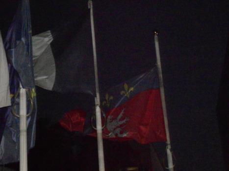bandera de Lyon y de Francia