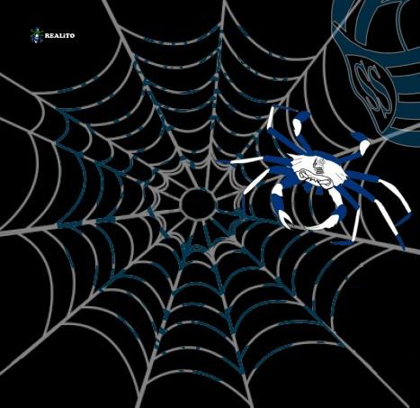 tela de araña - real sociedad